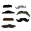 Fancy-dress-moustaches