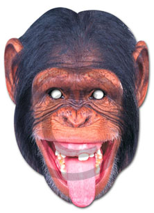 Monkey copy_1 copy